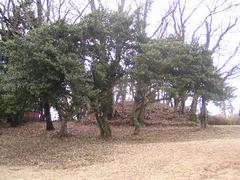 20060115-03