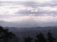 20060115-05