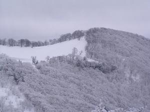 20060122-02