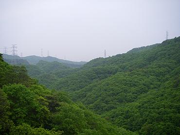 2007050504