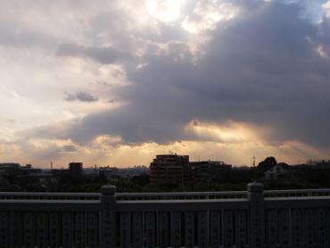 成田山不動尊からの眺め