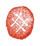 亀の甲羅をかたどった印影