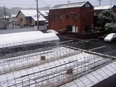 岩倉の雪景色