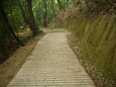 獅子窟寺からの下りの道