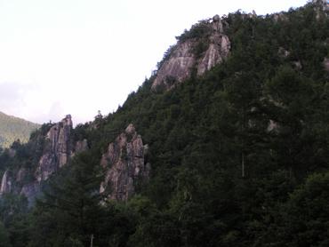 2009081406